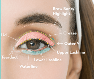 eyeshadow ideas for beginners